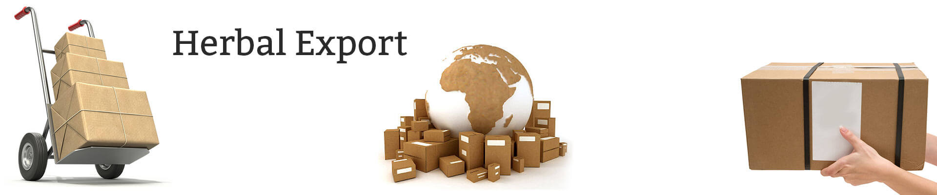 Herbal Products Exporter India, Private Label OEM Service